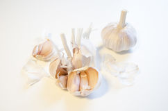 Garlic set isolated on white background. ! stock image