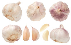 Garlic set isolated on white background. Top view. Royalty Free Stock Photos