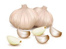 Garlic set on the white background Stock Photography