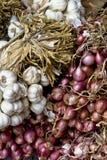 Garlic & Shallots. Fresh white fragrant garlic and shallot bulbs Royalty Free Stock Photography