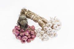 Garlic and shallots Stock Images