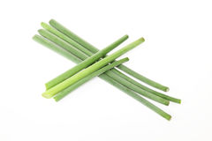 Garlic shoots in a white background Royalty Free Stock Image