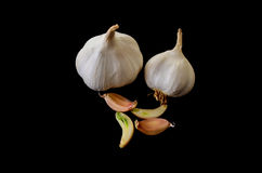 Garlic. Shot on black background Royalty Free Stock Photos