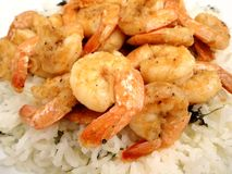 Garlic Shrimp Over Cilantro Rice Royalty Free Stock Images