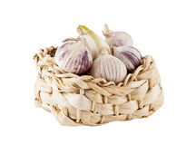Garlic in a small basket Stock Images