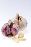 Garlic with some cloves on white background. Two cloves of garlic on a white background royalty free stock photos