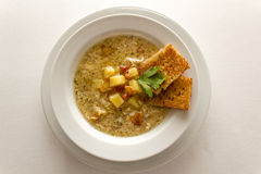 Soup. Garlic soup on a plate Stock Photography