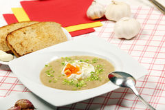 Garlic soup with poached egg Stock Images