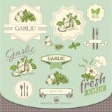 Garlic spice, vegetables, Stock Photo