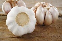Garlic spice Royalty Free Stock Photos
