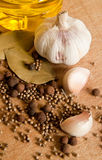 Garlic and spices Royalty Free Stock Photos