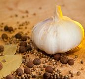 Garlic and spices Stock Images