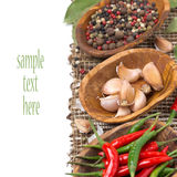 Garlic and spices in bowls, isolated Royalty Free Stock Photography