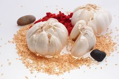 Garlic. Spices for cooking versatility Royalty Free Stock Images
