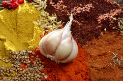 Garlic,spices mix on a wooden background Stock Photography