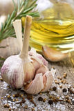 Garlic, spices Royalty Free Stock Photography