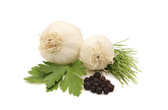 Garlic and spices Royalty Free Stock Images