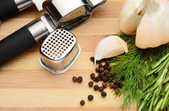 Garlic and spices Royalty Free Stock Photo