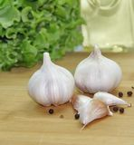 Garlic and spices Royalty Free Stock Photography