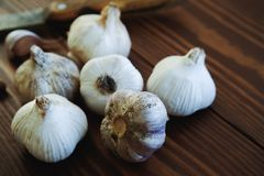 Garlic and spices on a wooden table. Cooking with garlic. Strengthening of immunity stock image