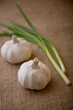 Garlic and spring onions Royalty Free Stock Photography