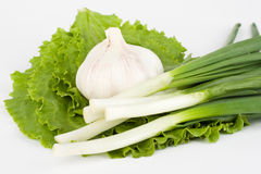 Garlic and spring onions on lettuce Stock Photo