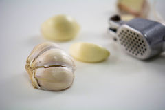 Garlic with steel crusher Stock Photos