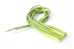 Garlic stem Stock Photo