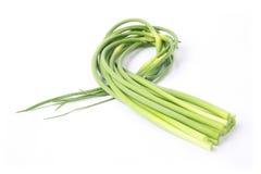 Garlic stem. Fresh garlic stem with white background Stock Photo