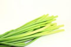 Garlic Stem Stock Photos