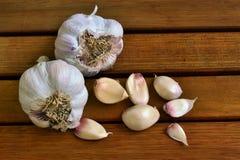 Garlic. Still life Stock Image