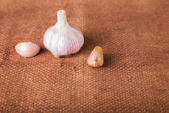 Garlic on the table Royalty Free Stock Photography