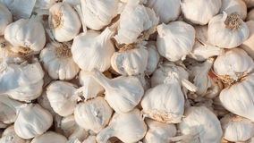 Garlic texture Stock Photo