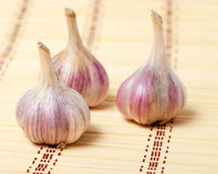 Garlic Royalty Free Stock Photos