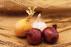 Garlic and three onions Royalty Free Stock Photo