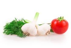 Garlic, tomato, dill Stock Photos