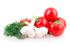 Garlic, tomato, dill Royalty Free Stock Images