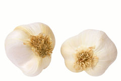 Garlic. Two garlic isolated on a white background. Horizontal position Stock Photo