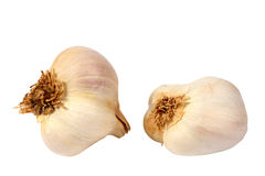 Garlic. Two garlic isolated on a white background. Horizontal position Stock Images