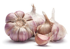 Garlic vegetable Royalty Free Stock Image