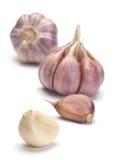 Garlic vegetable Stock Images