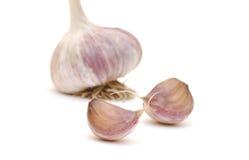 Garlic vegetable closeup Stock Photos