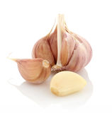 Garlic vegetable closeup on white background Stock Photography