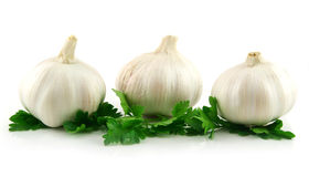 Garlic Vegetable with Green Parsley Leaves Royalty Free Stock Photography