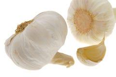 Garlic vegetable Royalty Free Stock Photo