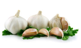 Garlic Vegetable with Parsley Leaves Isolated Royalty Free Stock Image