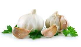 Free Garlic Vegetable With Green Parsley Leaves Stock Photos - 9465573