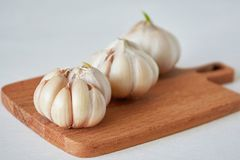 Garlic. Vitamin healthy food spice image. Spicy cooking ingredient picture. Concept of healthy food. Garlic vitamin healthy food spice image. Spicy cooking royalty free stock photo
