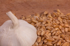 Garlic and wheat Royalty Free Stock Photography