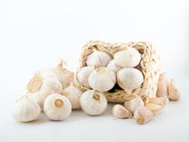 Garlic on White Royalty Free Stock Photos